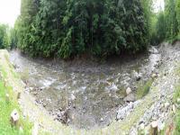 Chickley River Scott Road June 18 2013