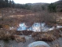 Pumpkin Hollow Brook looking upstream