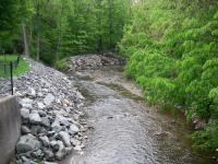 Pumpkin Hollow Brook / South River Confluence. May 2013
