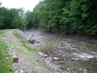 Natural river processes