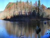 Deerfield River  at Mohawk Trail State Forest  11-3-2013