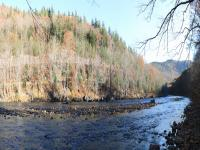 Deerfield River at Mohawk Trail State Forest